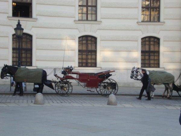 Heureuse de vous retrouver après ce bel intermède à Vienne ....