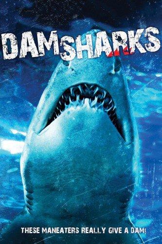 DamShark