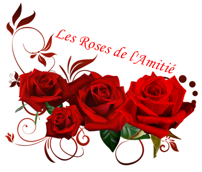 ►••MERCI A❤️NATHALIE-TENDRESSE ❤️ LILI1085 ❤️MIMI1963❤️ POUR VOTRE BELLE AMITIÉ___ღﻼ✿