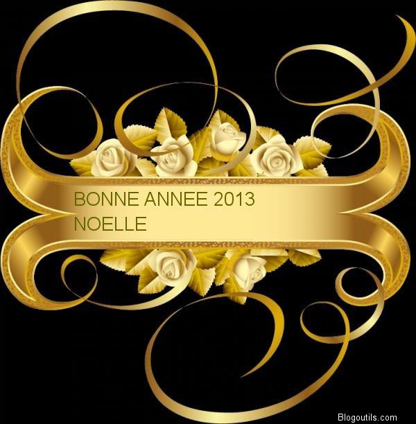 BONNE ANNEE 2013 A VOUS TOUS MES AMIS(ES)