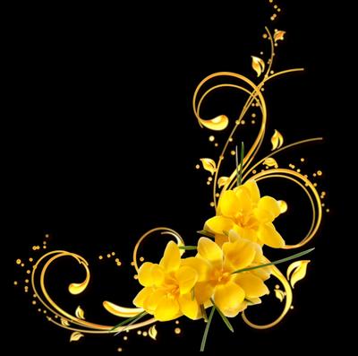 ☼MERCI ACOEUR-AIMER-04-2012 ET JACKY ET A SYLVIE A ROMANTIK85100 POUR CES TRES BEAUX CADEAUX ☼