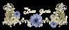 ★◆ ❤️ ☼ MERCI A ZAMOURS04 ET BABOUNE-DU-92 POUR VOTRE AMITIE☼❤️◆★