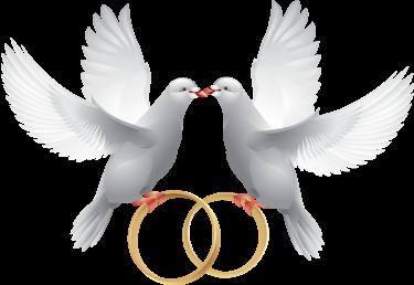 ❤️═◆ ❤️ ◆═AUJOURD'HUI JE FETE MES 34 ANS DE MARIAGE .. NOCE D'AMBRE═◆ ❤️ ◆═❤️