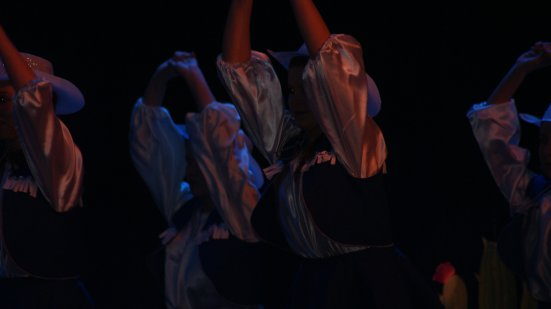 """"""" La danse est un art, cet art est un spectacle, ce spectacle permet à chacun d'être un jour sur scène """" ♥"""