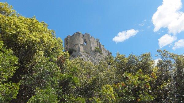 L'Hortus du Château au menhir