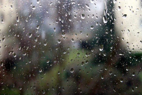 Pluie pluie pluie  !!! :(:(