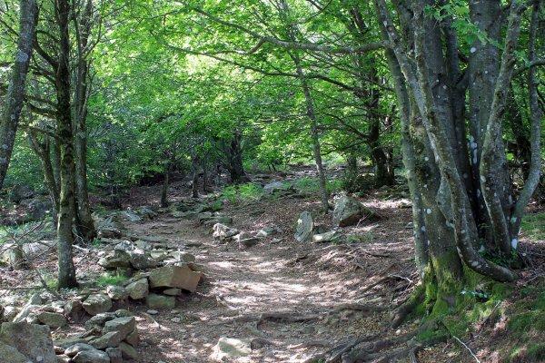 randonnée Caroux