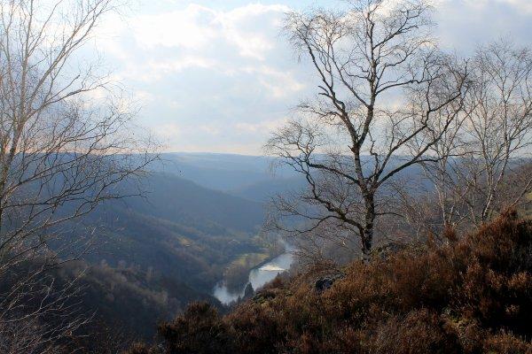 La Vinzelle Aveyron