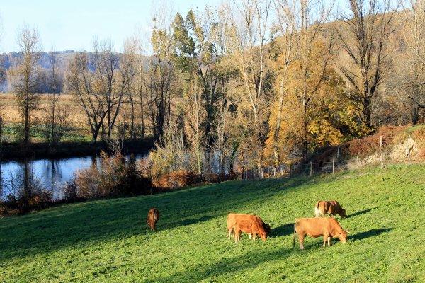 La vallée du LOT  dans Le Nord Aveyron