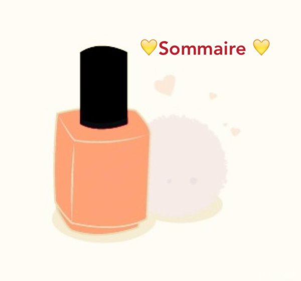 >SOMMAIRE <