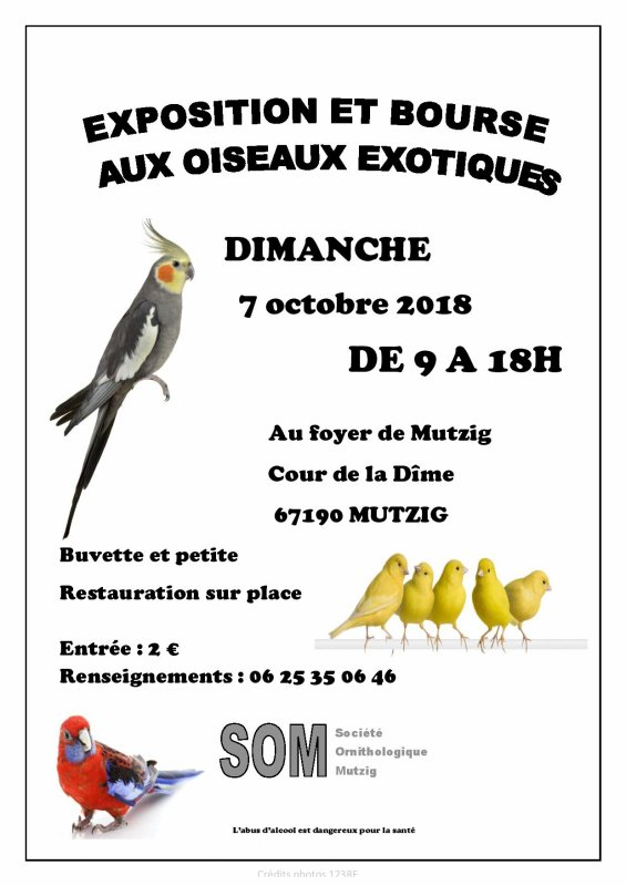Notre expo 2018