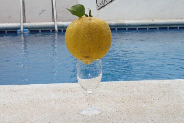 Citron Andalou