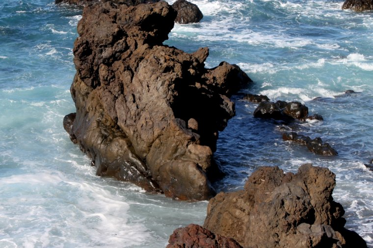 TENERIFE (Un monstre marin endormie sur la gréve)