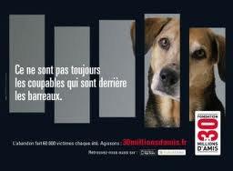 POURQUOI TOUTES CETTE VIOLENCE!!!!