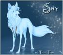 Photo de shy-the-wolf