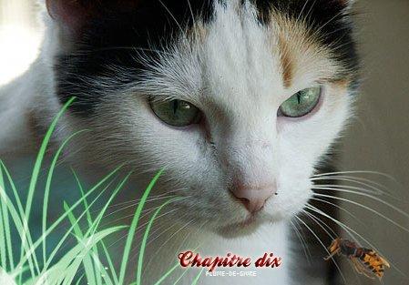 ~ Chapitre dix ~