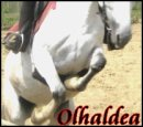 Photo de olhaldea