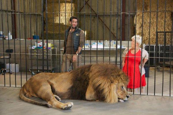 Episode 74 - Tous au zoo