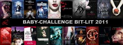 Challenge Bit lit 2011