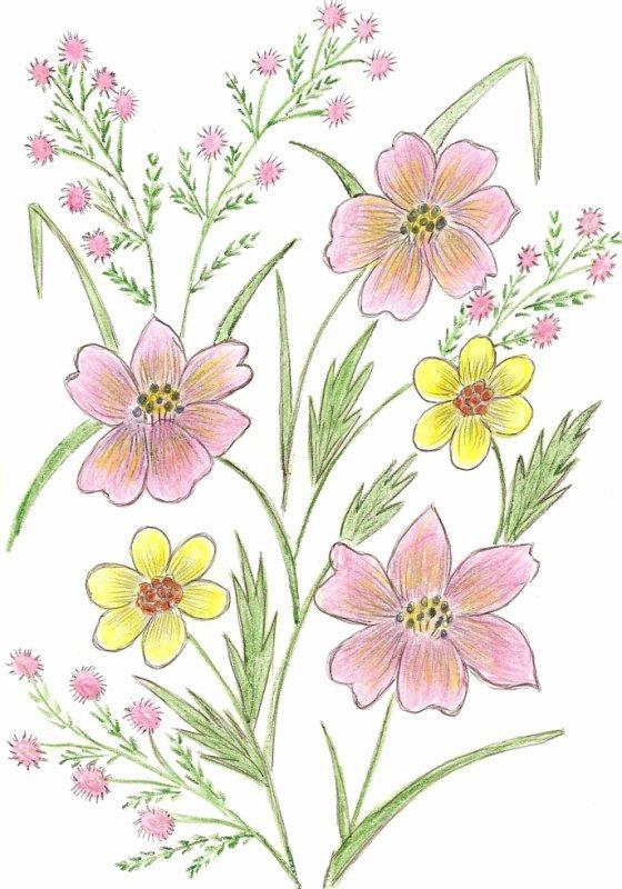 dessin de ma belle-mére 86 ans décéde le6 janvier 2011