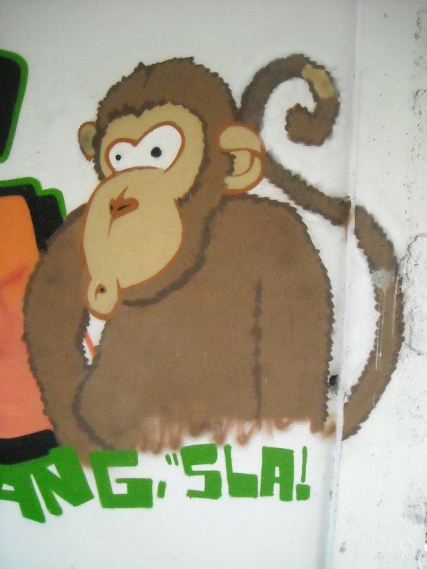 Détail Macaque Gang Terrain Riom