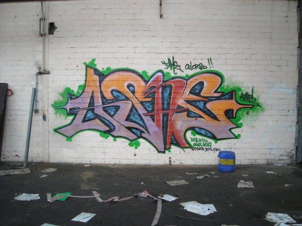 Ashe Terrain Cusset