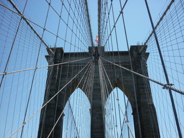 Pont de brooklyn et son parc