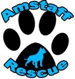 Amstaff Rescue !