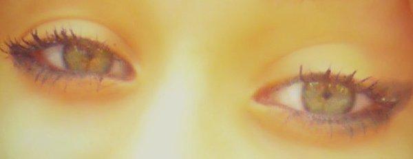 un petit com pour mais yeux