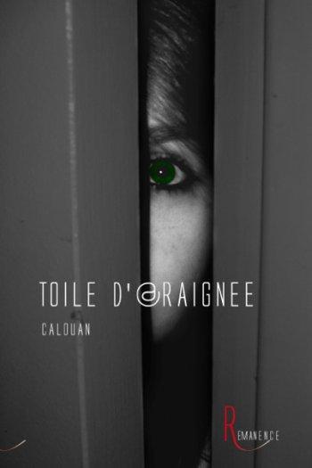- Toile d'@raignée de Calouan ________________ -