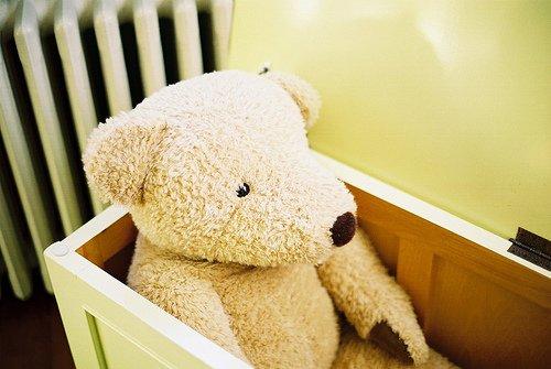 Les petits ours sont comme les chats : quand ils arrivent, ils ont l'air emprunté,insignifiant. Le temps seul révelera qui ils sont réellement.