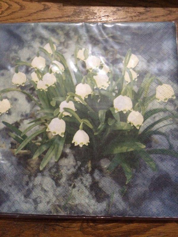 Fleurs 7 Muguet