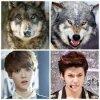 Ressemblance Luhan et Sehun