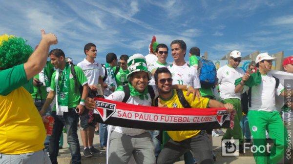 Belgique - Algérie ambiance hors et dans le stade