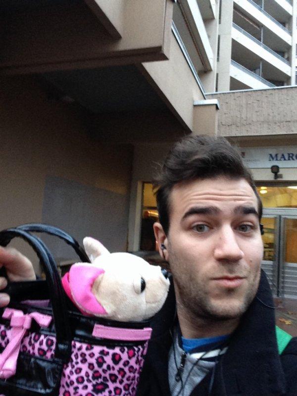 Voici chichilove le chien que part promener Karim dans la rue !  #MorningDeDifool