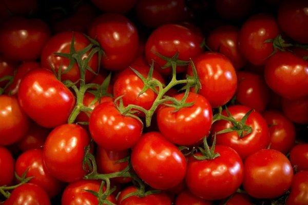 Le «voleur à la sauce tomate» !