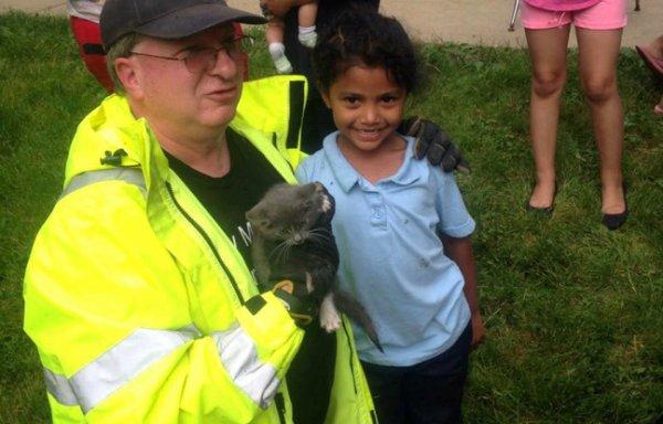 Une fillette sauve un chaton dans un égout trop étroit pour les pompiers !