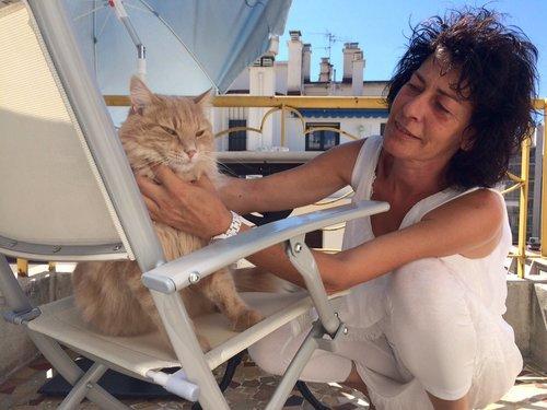 Kidnappé par un goéland à Nice, le chat Poppi a été retrouvé vivant !