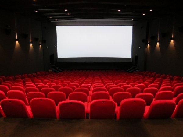 Un proviseur condamné pour s'être masturbé au cinéma !