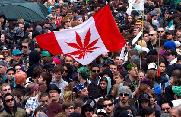 Le Canada en route vers la légalisation du cannabis !
