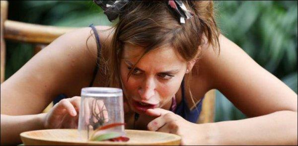 VIDEO - Une candidate d'un jeu télévisé mange une araignée vivante !