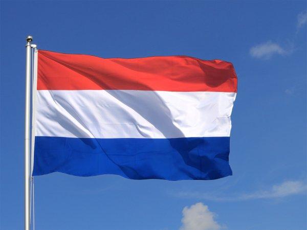 Les Pays-Bas créent une «banque du caca» pour la recherche !