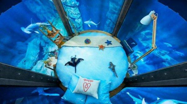 L'Aquarium de Paris loue une chambre dans le bassin des requins !