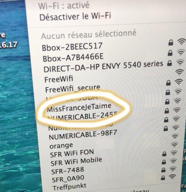Le voisin de Miss France 2015 tente de la séduire grâce au Wifi !