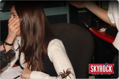 Marie face aux araignées sa phobie !