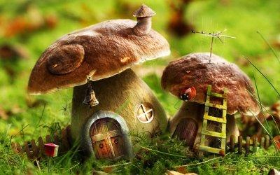 Maison champignon - Hihi :)