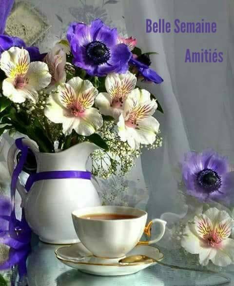 Bonjour... Je vous souhaite une excellente journée..et un bon début de semaine  prenez soins de vous bisous Imene.