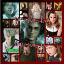 Photo de harry-potter-live