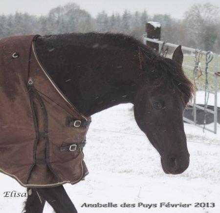 Février 2013 nous sommes toujours en hiver