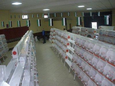 CONCURSO SOCIEDAD VIRGEN DEL PUERTO 2010